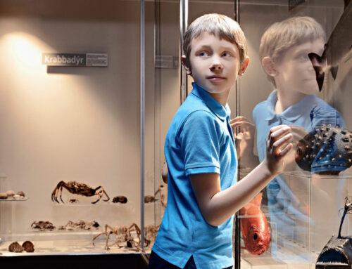 Las oportunidades de los museos en la era digital